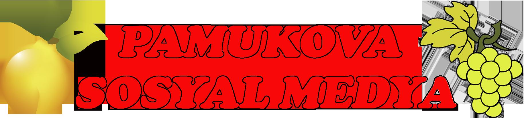 Pamukova Sosyal Medya